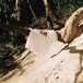 LASER BARCELONA / MONTSENY TEE (WHITE)